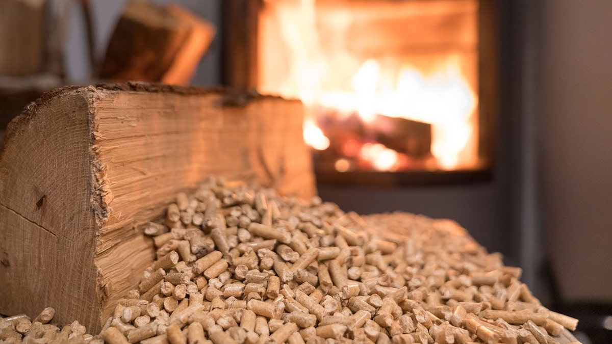 Consejos para comprar pellet de calidad